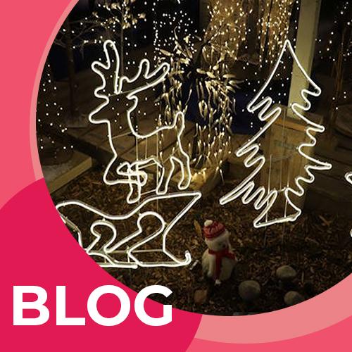 Kerstverlichting in en rondom huis