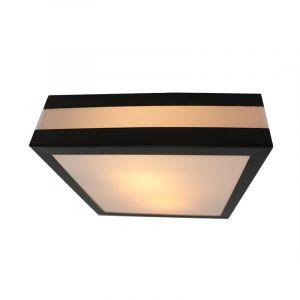 Antraciet Grijze buiten wand- & plafondlamp Tosca