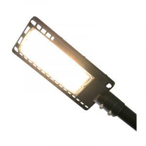 Philips LED Straatverlichting Garry, 60 Watt, 3000k warm wit, 5 jaar garantie