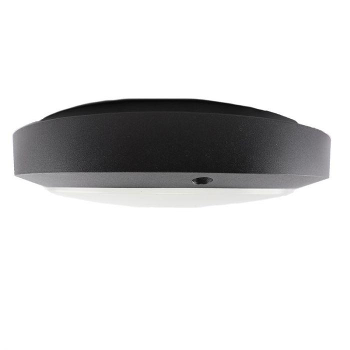 Zwarte buiten wand- & plafondlamp Twyla