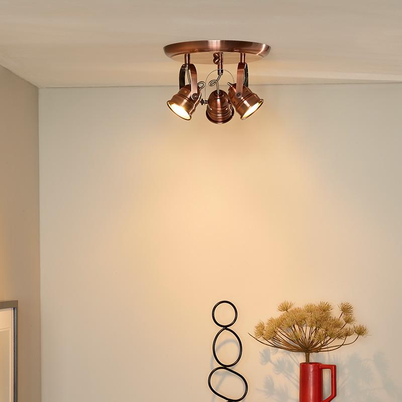 Landelijke plafondlampen