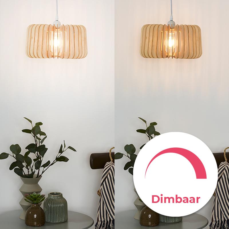 Alle dimbare filament lampen
